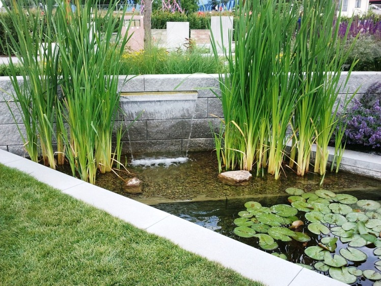 state-garden-show-591401_960_720