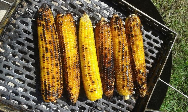 corn-2704899_1280