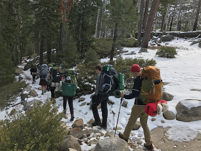 Beginners guide to backpacking picture of backpackers hiking into the woods