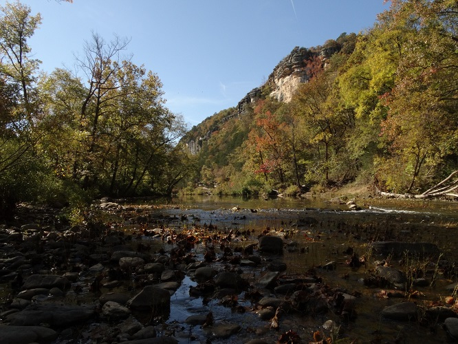 River shot with fall trees at Buffalo National River